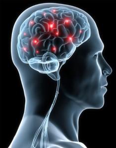 brain_scan_b01